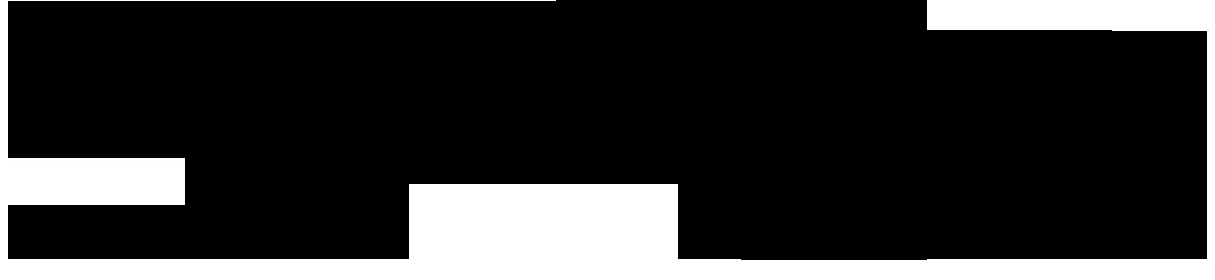 SiliconPowerlogo